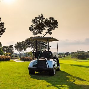 Stryten golf cart battery